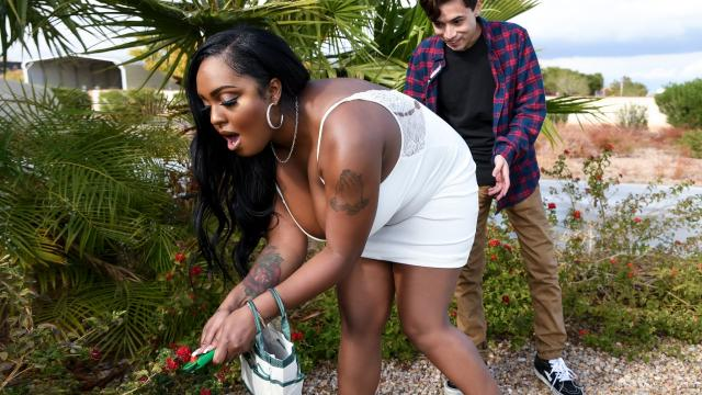 Don't Toy With My Ass [Layton Benton, Juan El Caballo Loco / 08.01.2020]